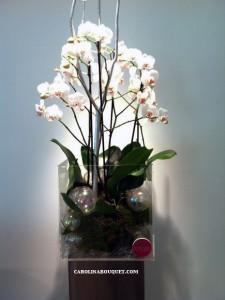 centro-con-orquideas-465x620-3
