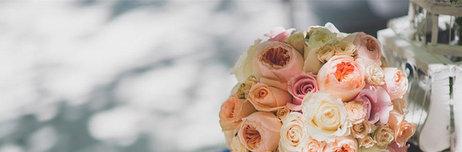 banner de flores liofilizadas