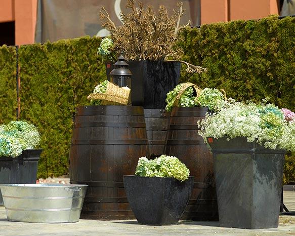 flores y plantas para restaurantes en Granada