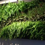 jardín vertical para escenografía