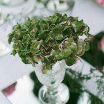 copa de cristal con plantas decoración para bodas