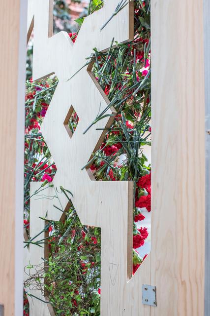 Estructura en maya con transparencias y flores rojas