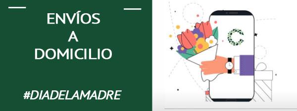 enviar flores en Granada para el día de la madre